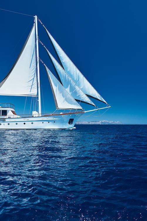 Small cruise ship (Corsario)  - 17