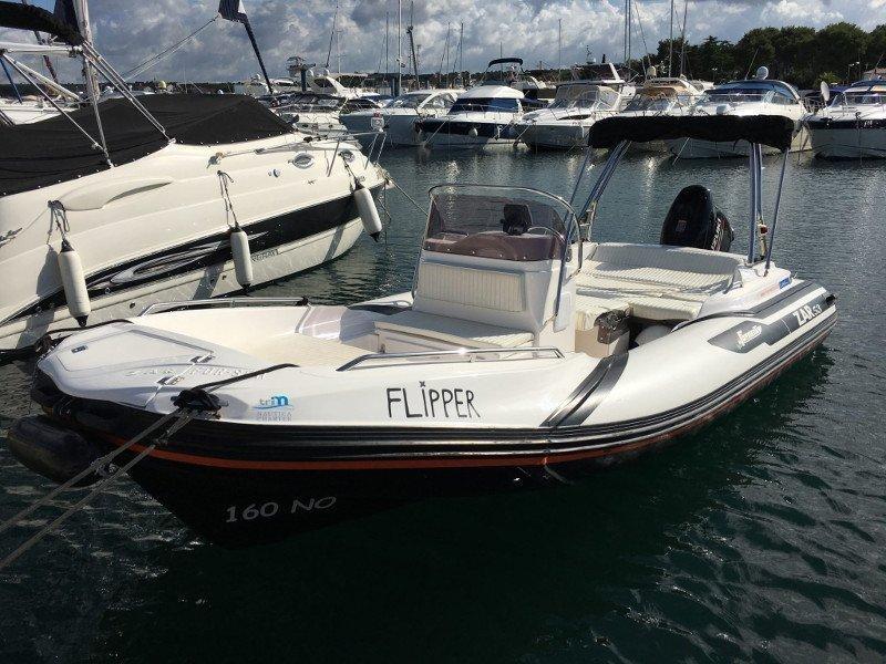 Zar 53 - Flipper  (Flipper) Main image - 0
