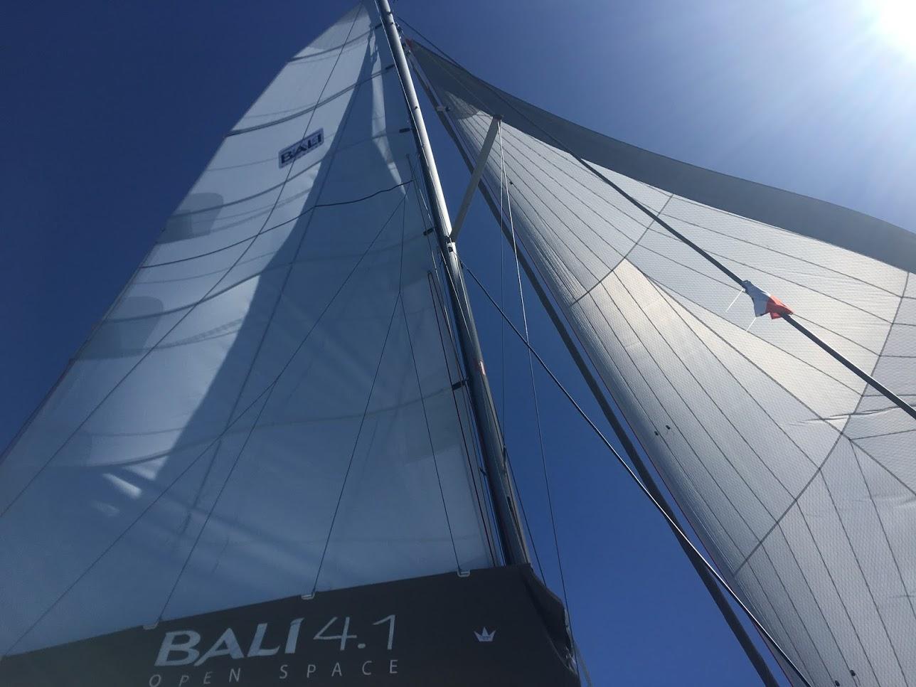Bali 4.1 (Iris)  - 7