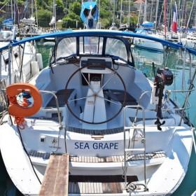 Seagrape