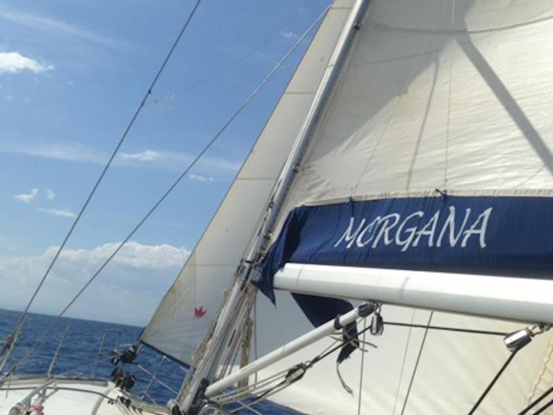 Bavaria 44 (Morgana)  - 3