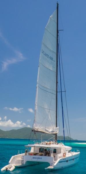 Catlante 600 - incl. crew & full board (Bacchus)  - 8