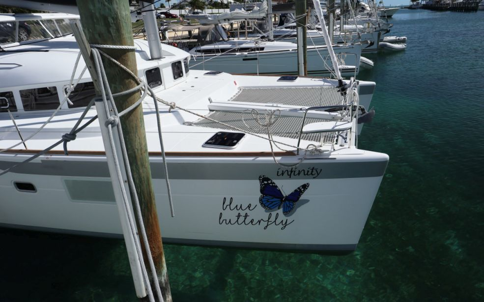 Lagoon 380 - 3 + 2 cab. (Blue Butterfly )  - 9
