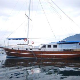 Albatros B