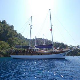 Blue Pearl 2