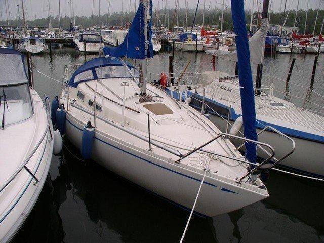 Comfort 30 (Isabela)  - 0