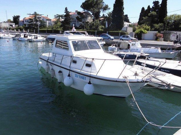 Damor 800 - 1 cab. (Zadar)  - 0