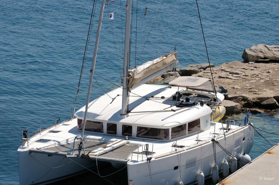 Corsica Cat - 0