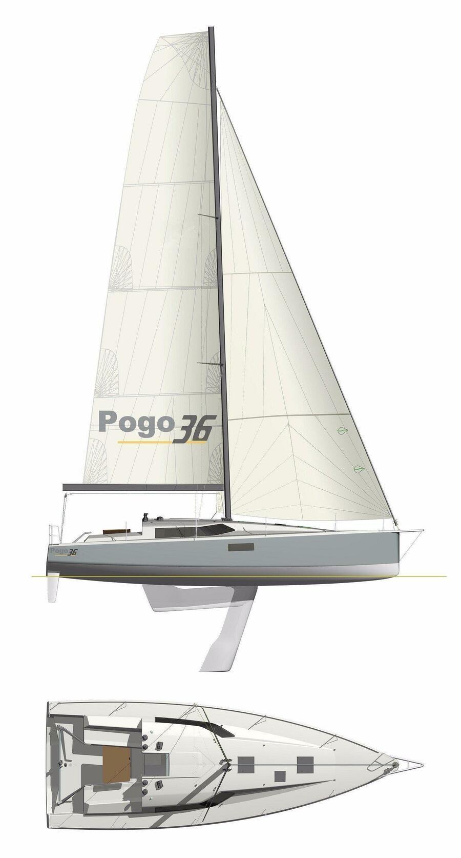 Pogo 36 (POLLUX)  - 13