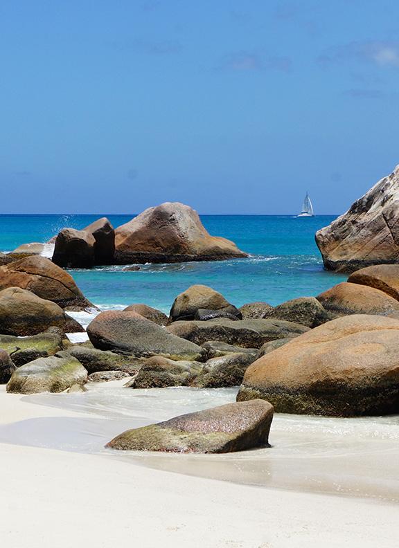 Seychelles cruise main