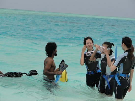 Maldives diving - Theia - 3